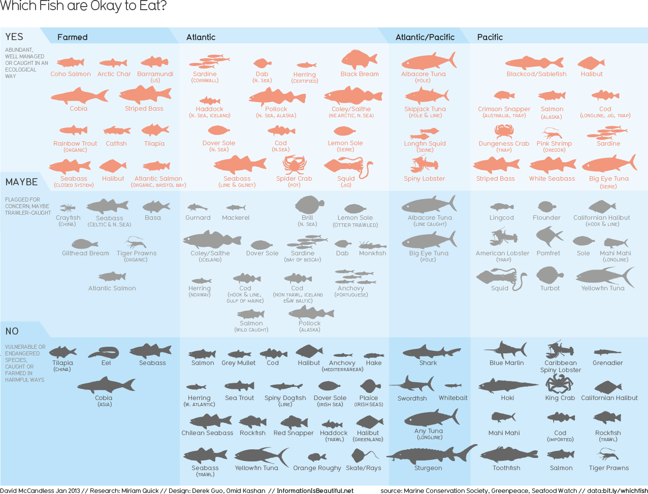 Which Fish? - InformationIsBeautiful.net